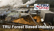 TRU Group forest pulp board paper industy consultant